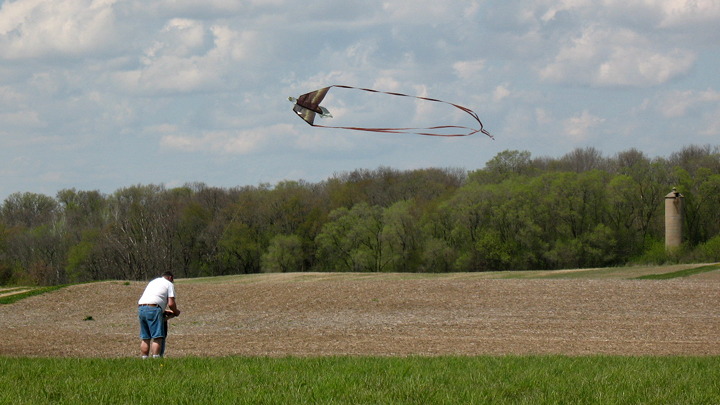 This is a picture of people flying a kite at Silverwood Park.