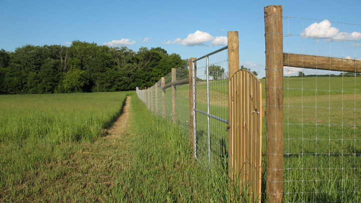 This is a picture of fencing around Silverwood's heirloom apple orchard.