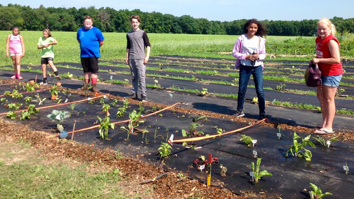 This is a picture of 2018 Edgerton Summer School students showing their gardening plots.