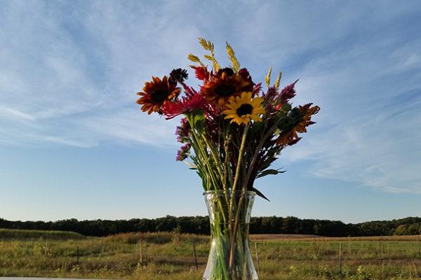 YDF flower bouquet-farm background