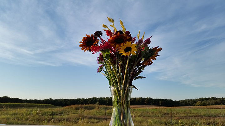YDF flower bouquet-farm background