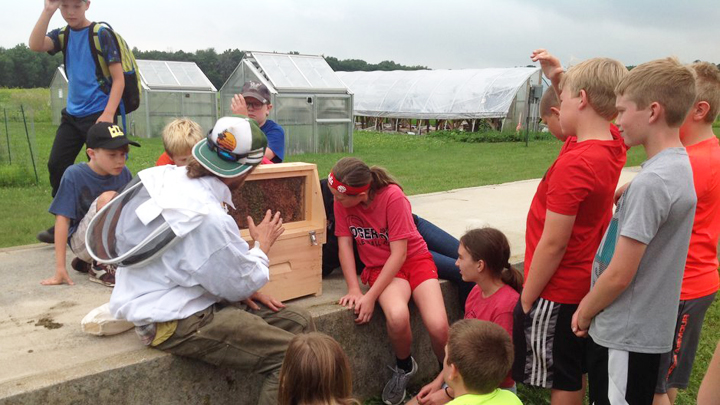 THis is a picture of Silverwood Summer School students with a beekeeper.